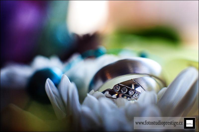 Svatební fotograf - Bruntál (9)